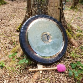 Moon-gong-by-tree